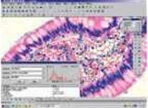 YD-200S系列数码生物显微镜