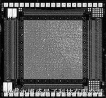 光电压焦平面列阵探测器/长春博盛量子科技有限公司