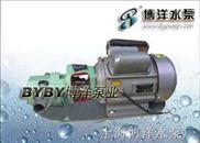 WCB30 -WCB齿轮油泵
