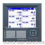 GDV4000十二通道单色无纸记录仪(蓝屏)