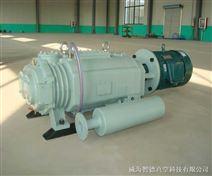 干式螺杆真空泵