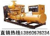 进口柴油发电机组/进口柴油发电机/进口发电机组/进口发电机