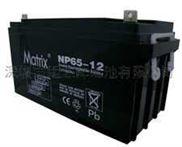 12V65AH UPS电池