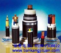 五芯(4+1)交联聚乙烯绝缘聚氯乙烯护套电力电缆