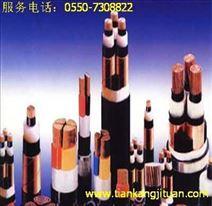二芯交联聚乙烯绝缘钢带铠装聚氯乙烯护套电力电缆