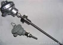 一体化温度传感器,PT100一体化温度传感器,温度传感器