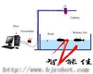 水下机器人协作平台-水下机器人协作平台