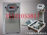 (上海)1吨防爆电子台称