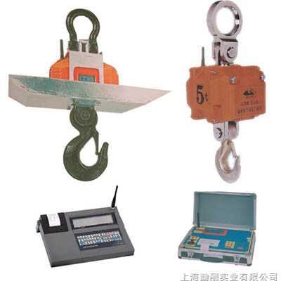 宝山不锈钢电子吊秤,30上海耐高温吊秤