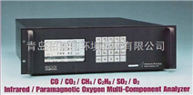 CAI600NDIR红外多组分气体分析仪