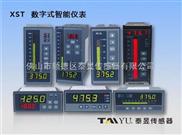 工业智能仪表、液位显示控制仪表