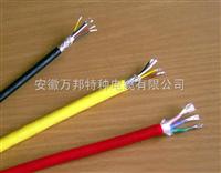 BP系列耐高温电机电缆规格型号变频电机连接电缆报价