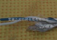 1线对RS485通讯电缆RS485电缆价格