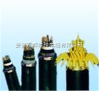 氟塑绝缘聚氯乙烯护套105°阻燃控制电缆耐高温控制电缆型号