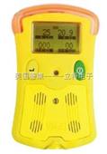 手持式复合气体检测仪VISA