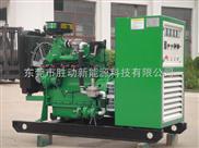 胜动沼气发电机组,沼气项目发电机组,中小型(5-200KW)沼气发电机
