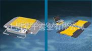 SCS-便携式称重仪—质量可靠有保障