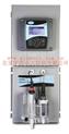 在线余氯分析仪 型号:GZYT-Polymetron 9184库号:M346796