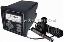 在线PH计 型号:XN12/PHG-810库号:M130528