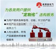 GPT-Z-12.7/31技术参数 三相组合式过电压保护器 GPT-Z-12.7/31