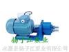 S微型S微型齿轮输油泵