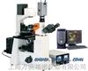 电脑型倒置荧光显微镜