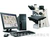 GQ-300金相分析仪器