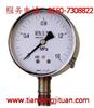 YA-100/150系列氨压力表